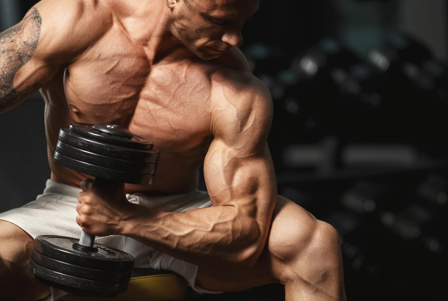 Benefits And Side Effects Of Rad 140 Purchase