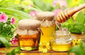 High quality French honey (mielfrançais) for good health