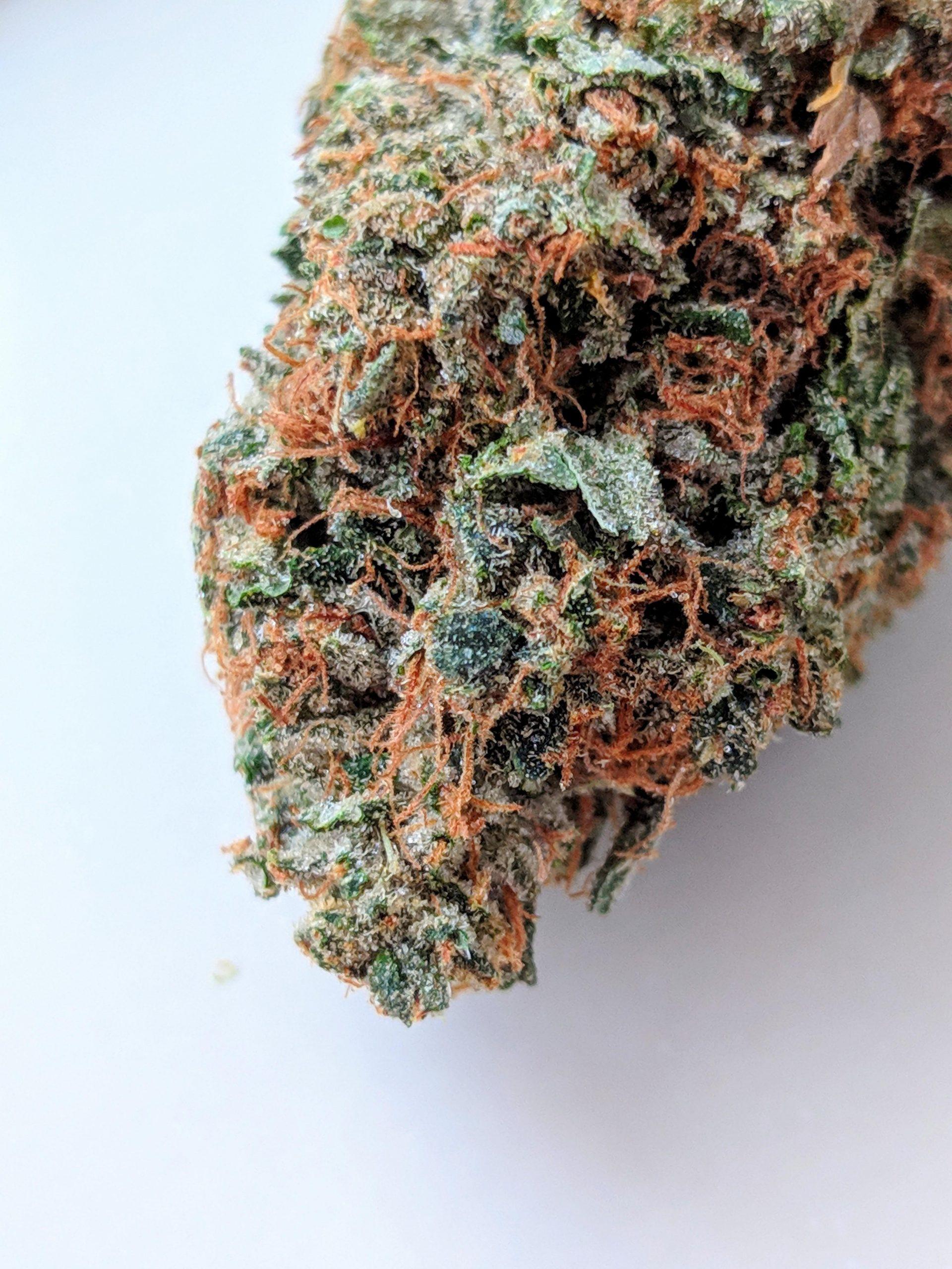 Buy Weed Online Features