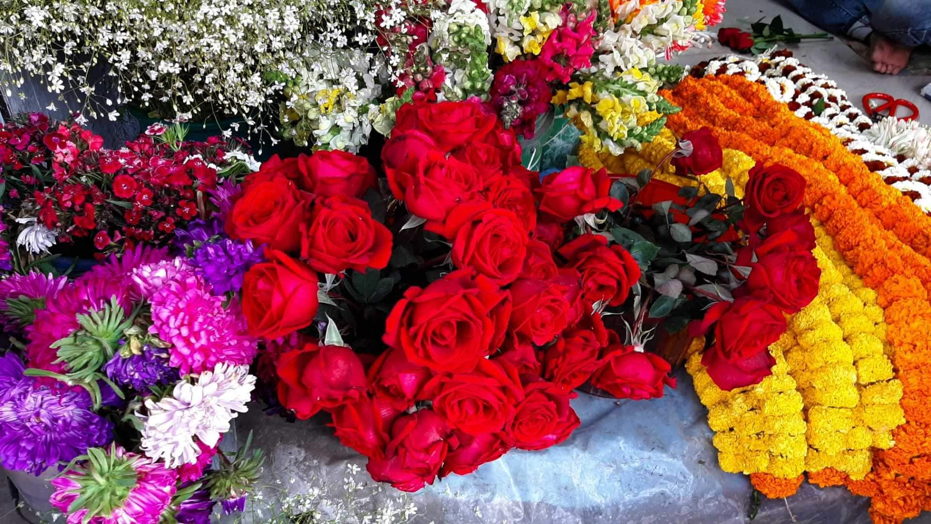 Gift Beautiful And Fresh Flowers To Your Loved Ones