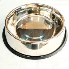 Everything About Metal Dog Food Bowls