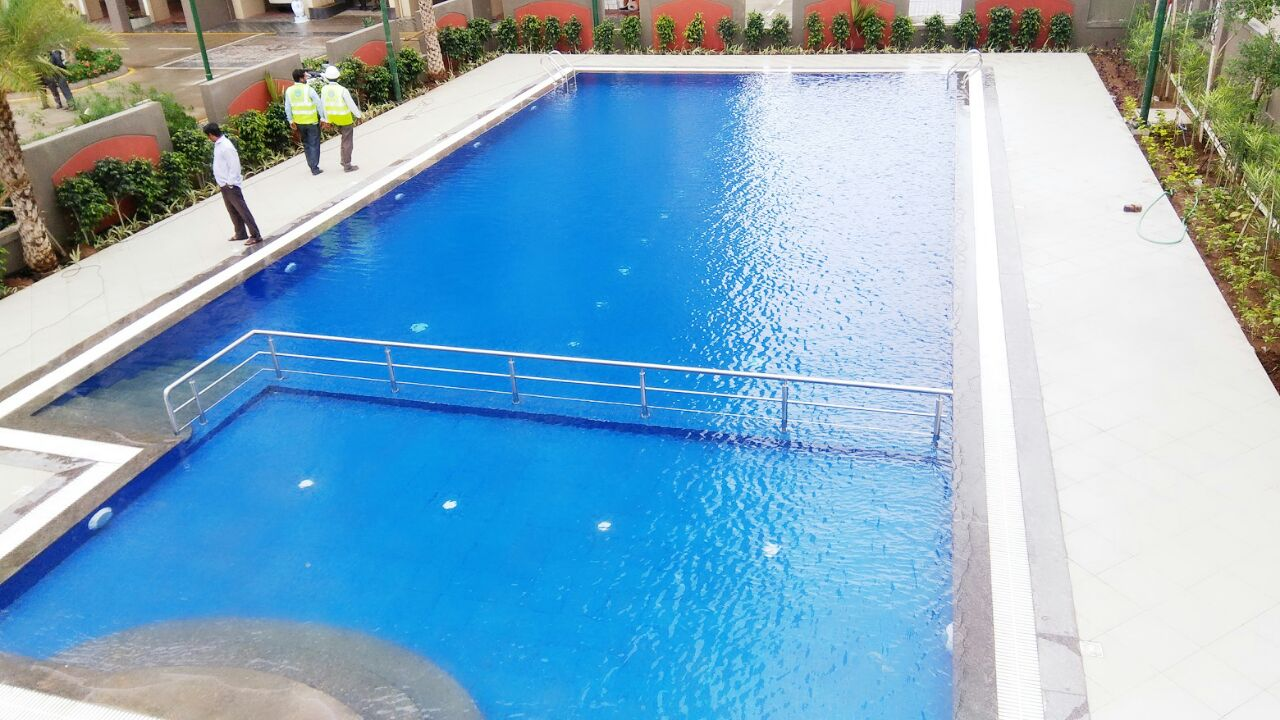 Are you looking for pool companies? Do not look any further